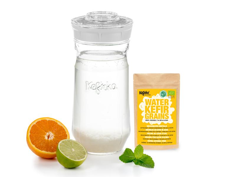 kefir-maker-kefirko-I-water-kefir-grains-I-dried-I-white-14