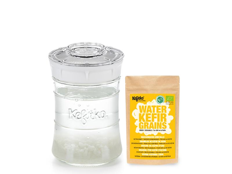 kefir-maker-kefirko-I-water-kefir-grains-I-dried-I-white-848