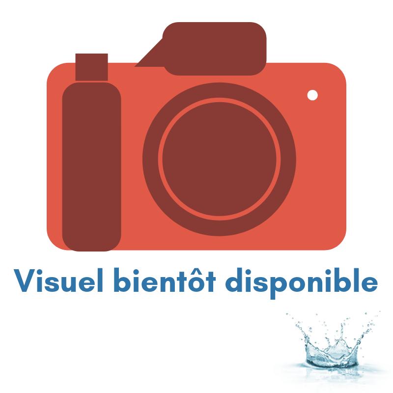 PADLSTORE-VISUEL-BIENTOT-DISPO (1)