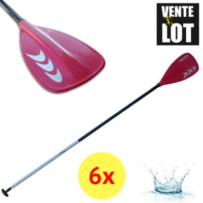 LOT DE 6 PAGAIES DE SUP PRIJON RIM CHIEMSEE