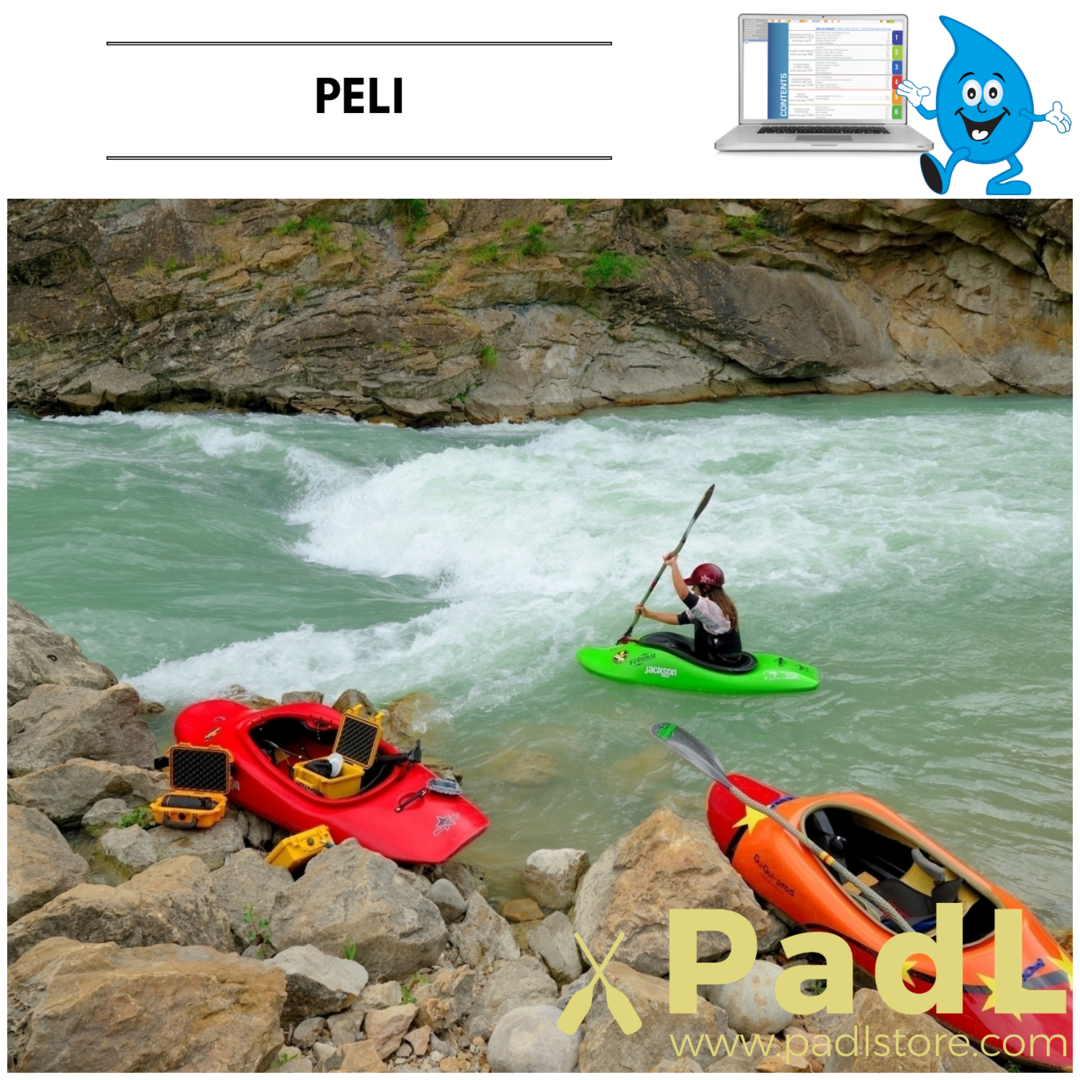 PADL-Catalogues-peli