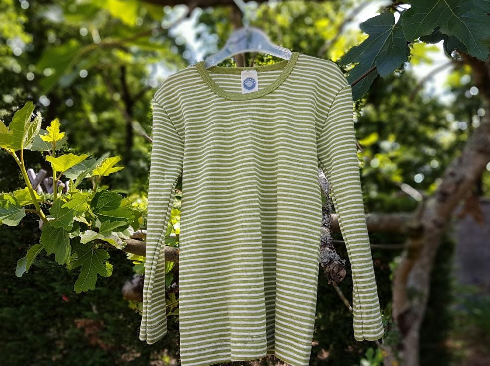 Cosilana T-shirt lange mouwen wol/zijde Groen gestreept
