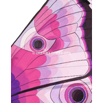50560-ailes-papillon2