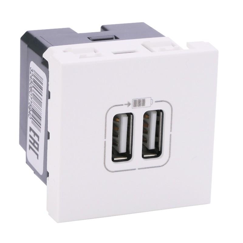 LEGRAND Chargeur 2 USB Type-A 2,4A 5V= 12W Mosaic 2 modules 230V - blanc 077594