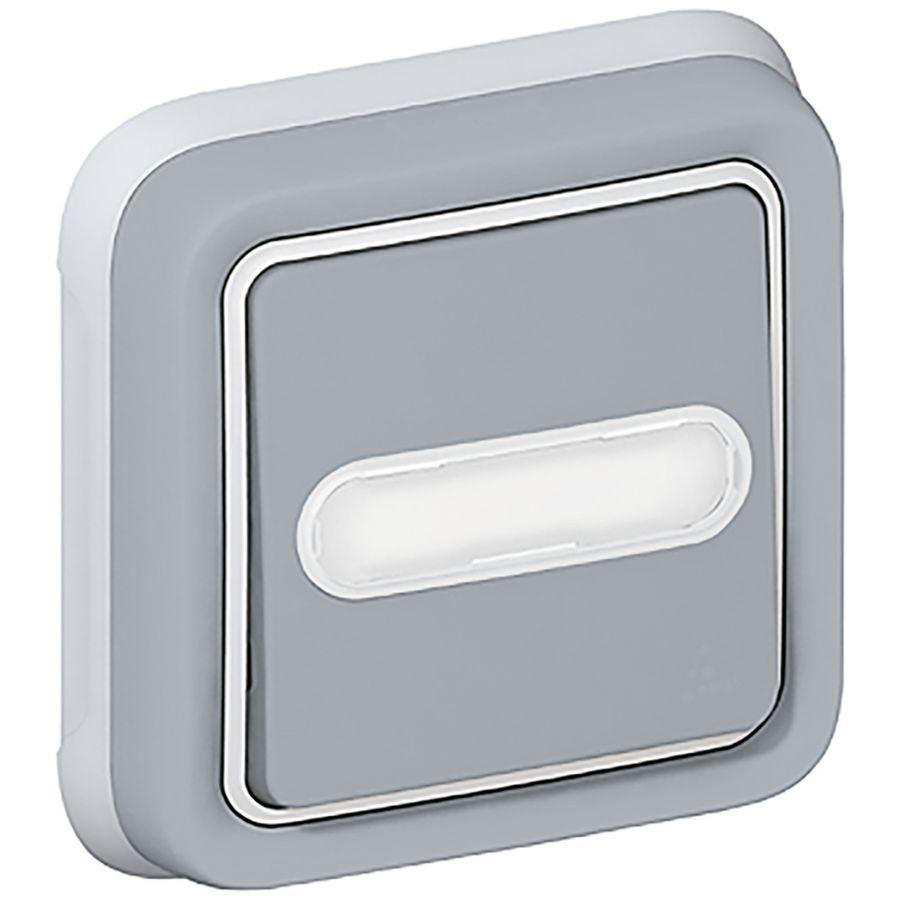 Legrand - Poussoir inverseur NO+NF lumineux avec porte-étiquette Plexo complet IP55 encastré 10A - gris - Réf : 069824