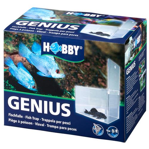 HOBBY Genius 21 x 13 x 15 cm piège pour poissons craintifs, opprimés, batailleurs ou malades