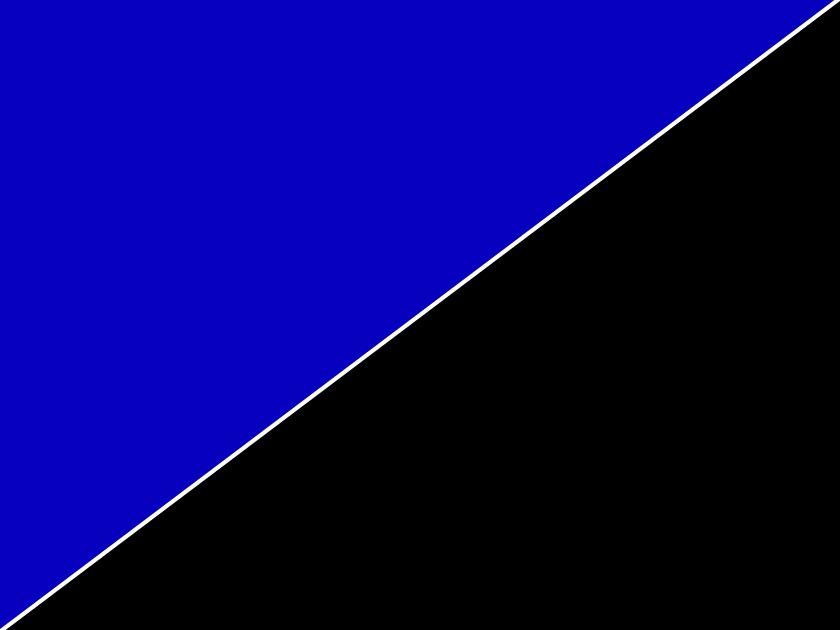 Poster d\'aquarium à la coupe imprimé sur deux faces Bleu/Noir. Hauteur 50cm