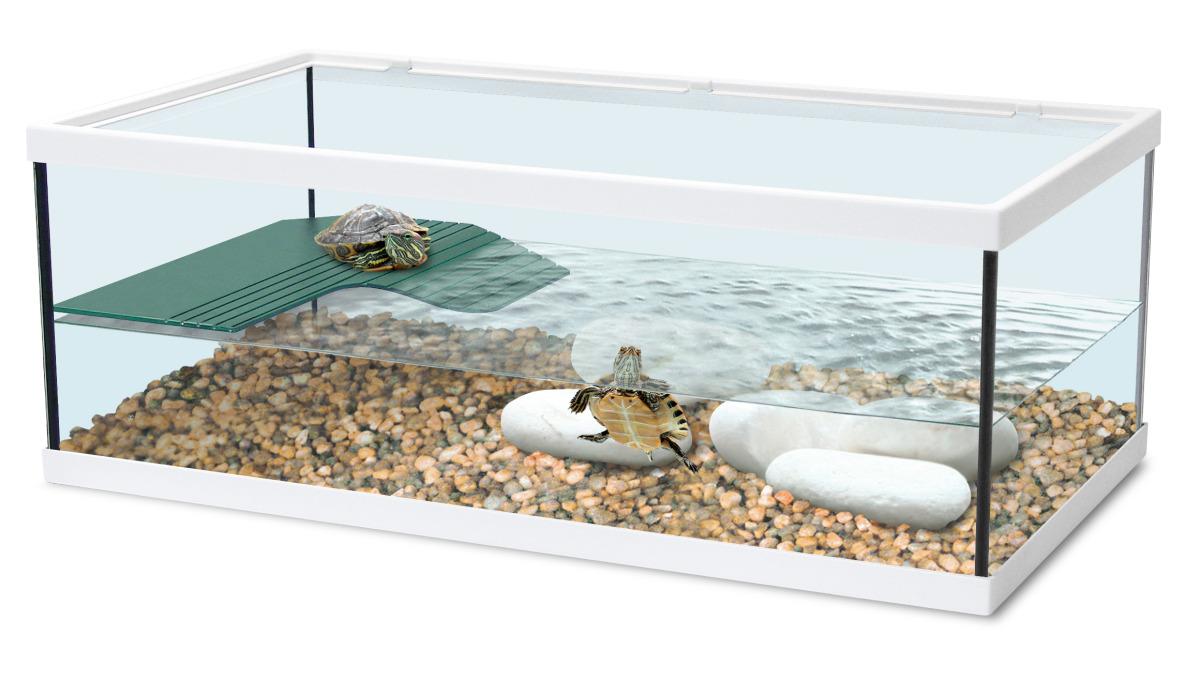 ZOLUX Aqua Tortum 55 Blanc aquaterrarium pour tortues aquatiques et amphibiens. Dimensions : 55 x 30 x 20 cm