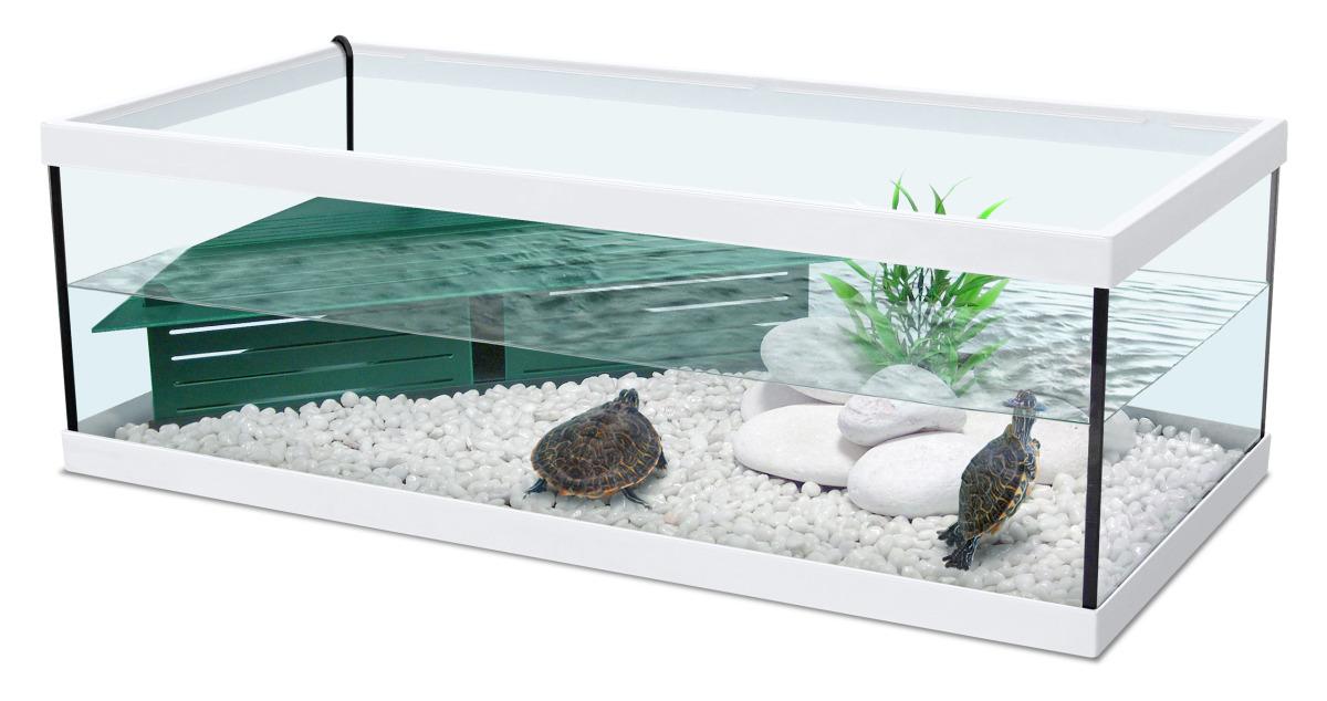 Zolux aqua tortum 75 blanc aquaterrarium avec filtre pour for Filtre aquarium tortue