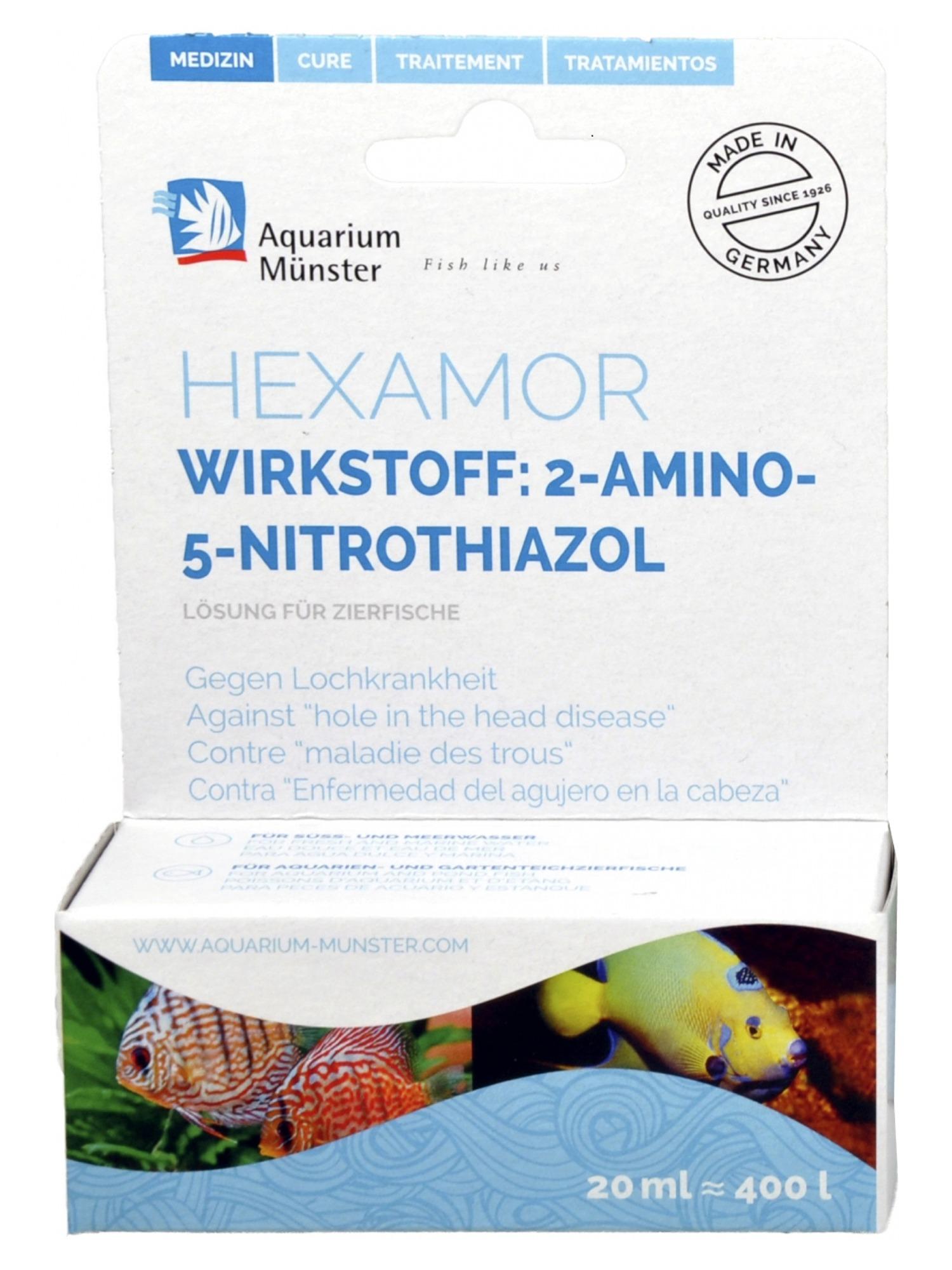 AQUARIUM MÜNSTER Hexamor 20 ml traitement concentré contre la maladie des trous. Traite jusqu\'à 400L