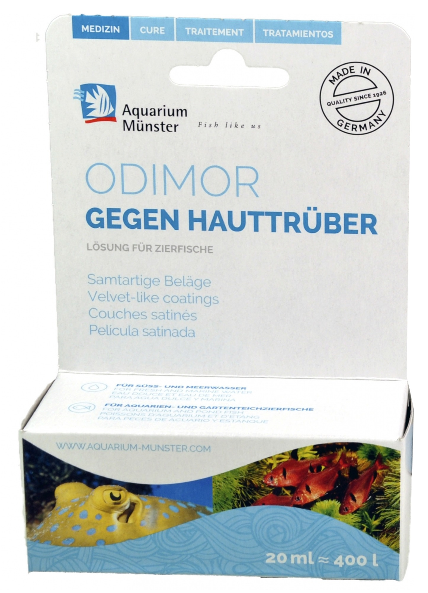aquarium-munster-odimor-traitement-poisson-aquarium