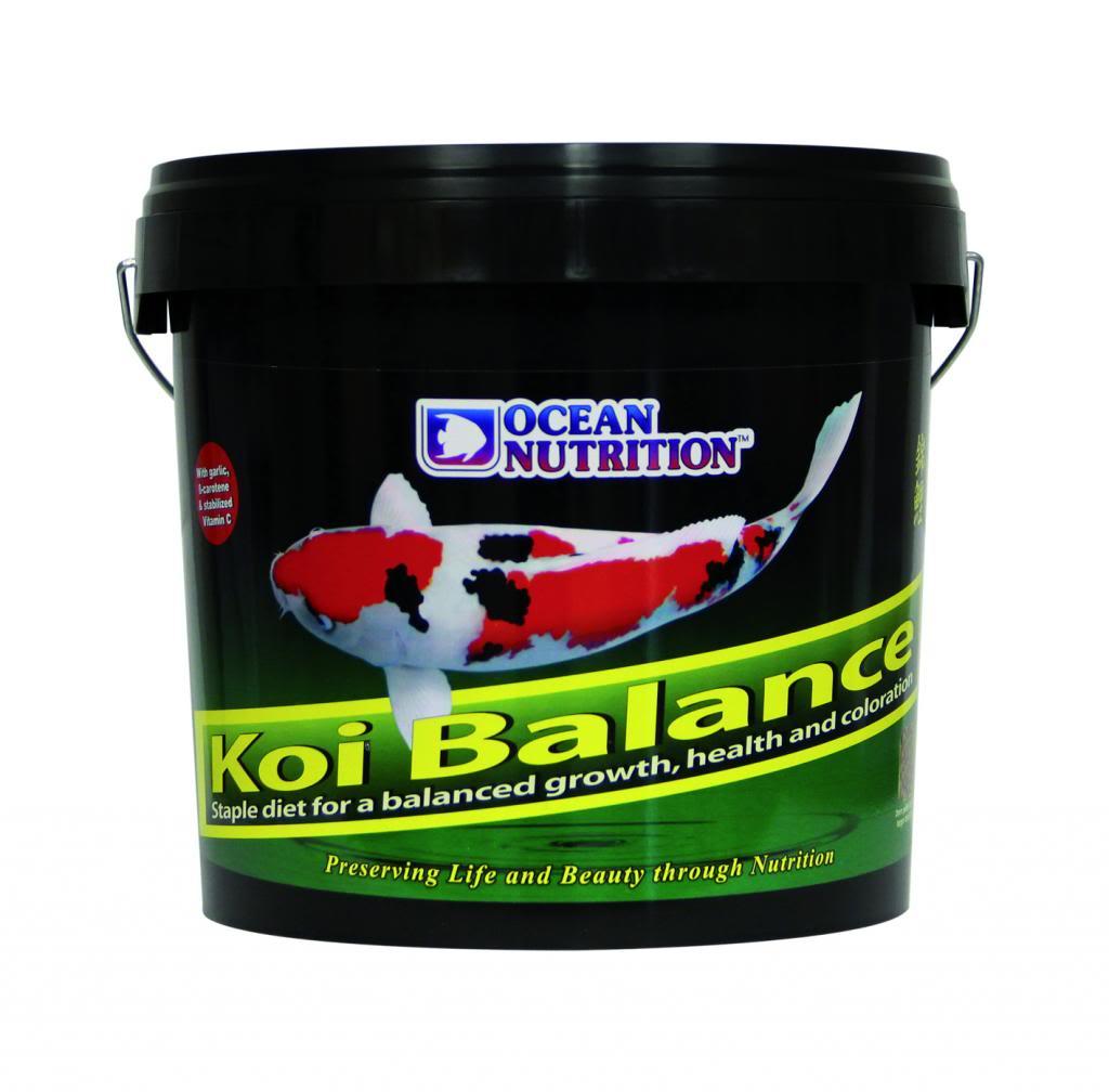 OCEAN-NUTRITION-Koi-balance-2-kg-nourriture-haute-qualité-pour-carpe-koi-bassin