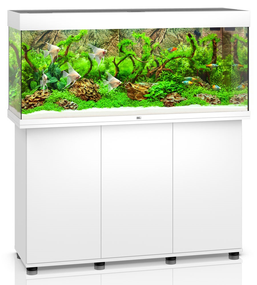 aquarium juwel rio 240 led dim 121 x 41 x 55 cm 240 litres coloris au choix avec ou sans. Black Bedroom Furniture Sets. Home Design Ideas