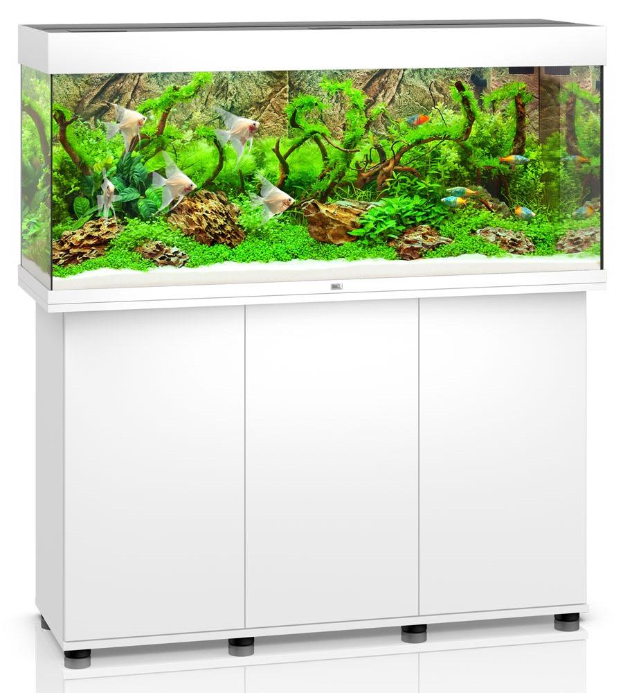 Aquarium JUWEL Rio 240 LED dim. 121 x 41 x 55 cm 240 Litres, coloris au choix, avec ou sans meuble SBX !