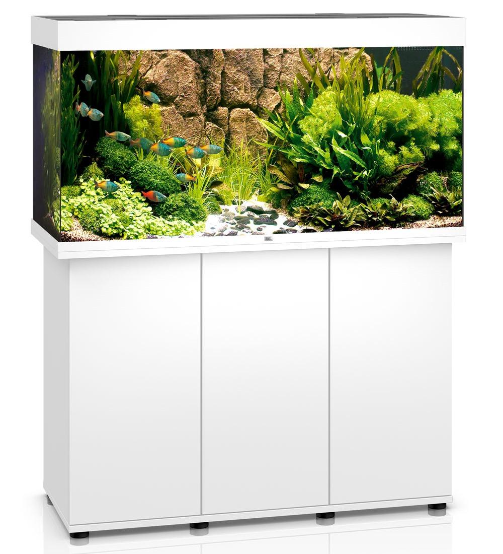 Aquarium juwel rio 300 dim 121 x 51 x 66 cm 350 litres for Meuble aquarium 120 cm