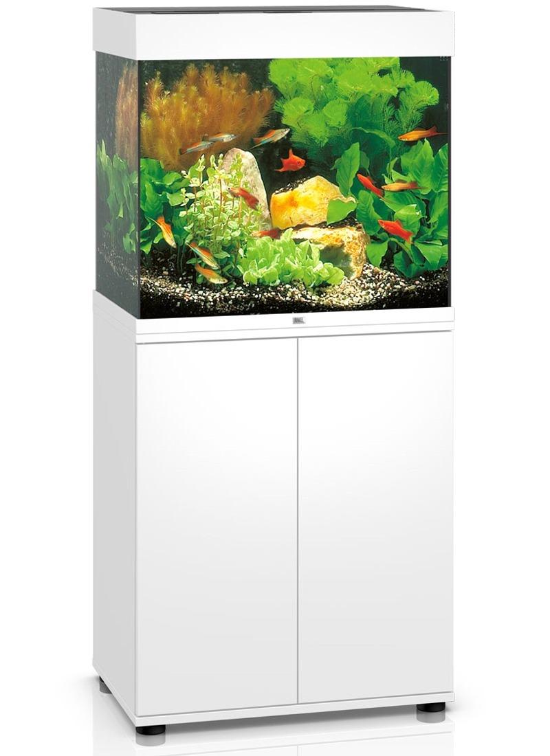 Aquarium JUWEL Lido 120 LED dim. 61 x 41 x 58 cm 120 Litres, coloris au choix, avec ou sans meuble SBX