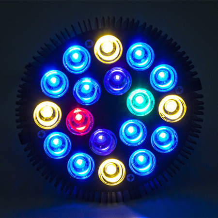 asaqua par38 54w ampoule leds haute puissance 18 x 3w avec culot e27 pour aquarium marin. Black Bedroom Furniture Sets. Home Design Ideas