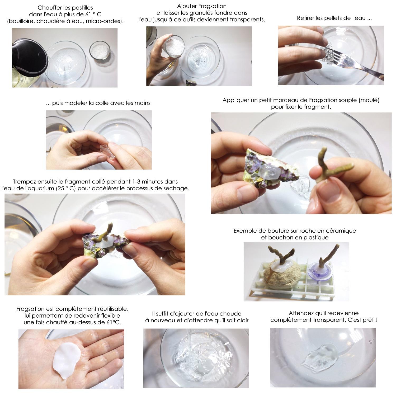 Colle thermique pour boutures de coraux DVH FragSation