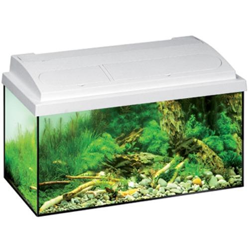 aquarium-eheim-aquastar-54-blanc