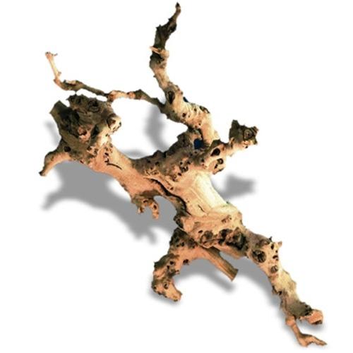 AMTRA Racine naturelle de Vigne 15 à 30 cm