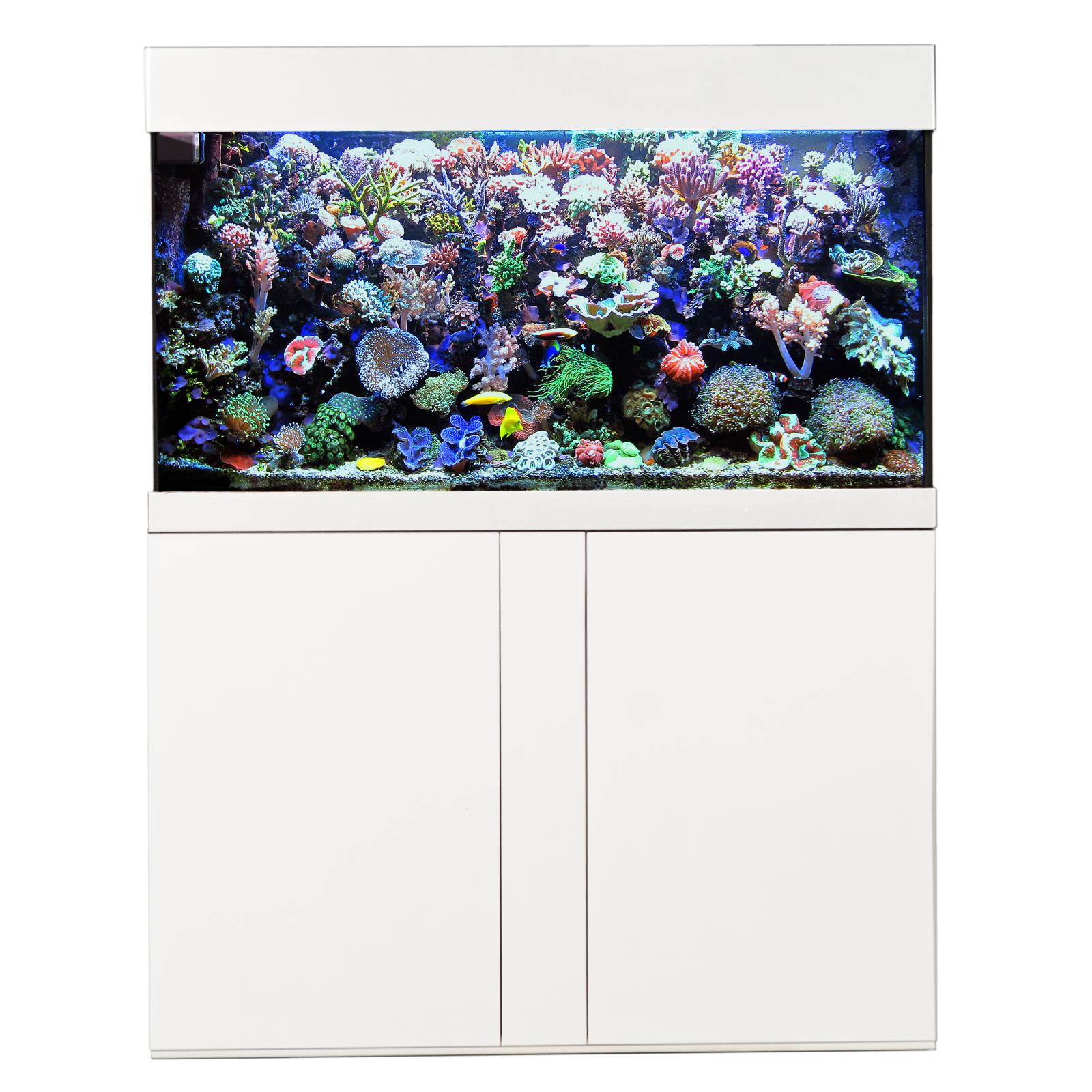 AQUA MEDIC Magnifica 100 Blanc kit aquarium 320L équipé eau de mer avec meuble