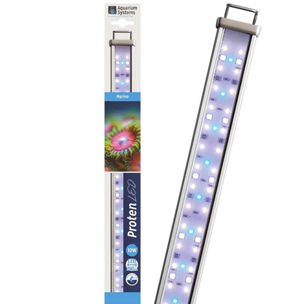AQUARIUM SYSTEMS Proten LED Marine 25 cm rampe d\'éclairage pour aquarium de 25 à 45 cm ou remplacement d\'un tube T5 ou T8
