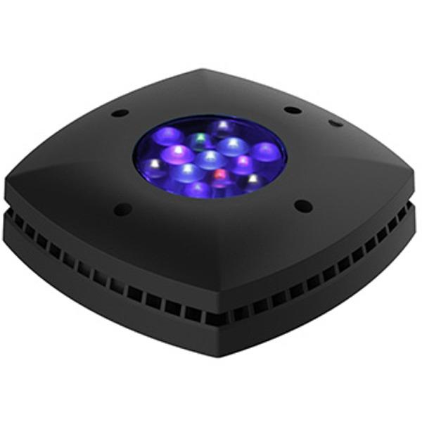 AI Prime HD Black 55W rampe LEDs haute puissance pour l\'éclairage des aquariums récifaux