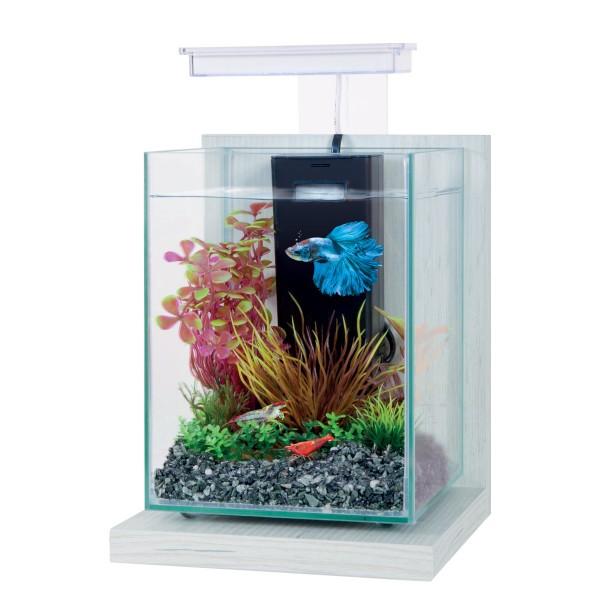 ZOLUX Wiha Ceruse Blanc 4L kit nano-aquarium équipé avec éclairage LEDs