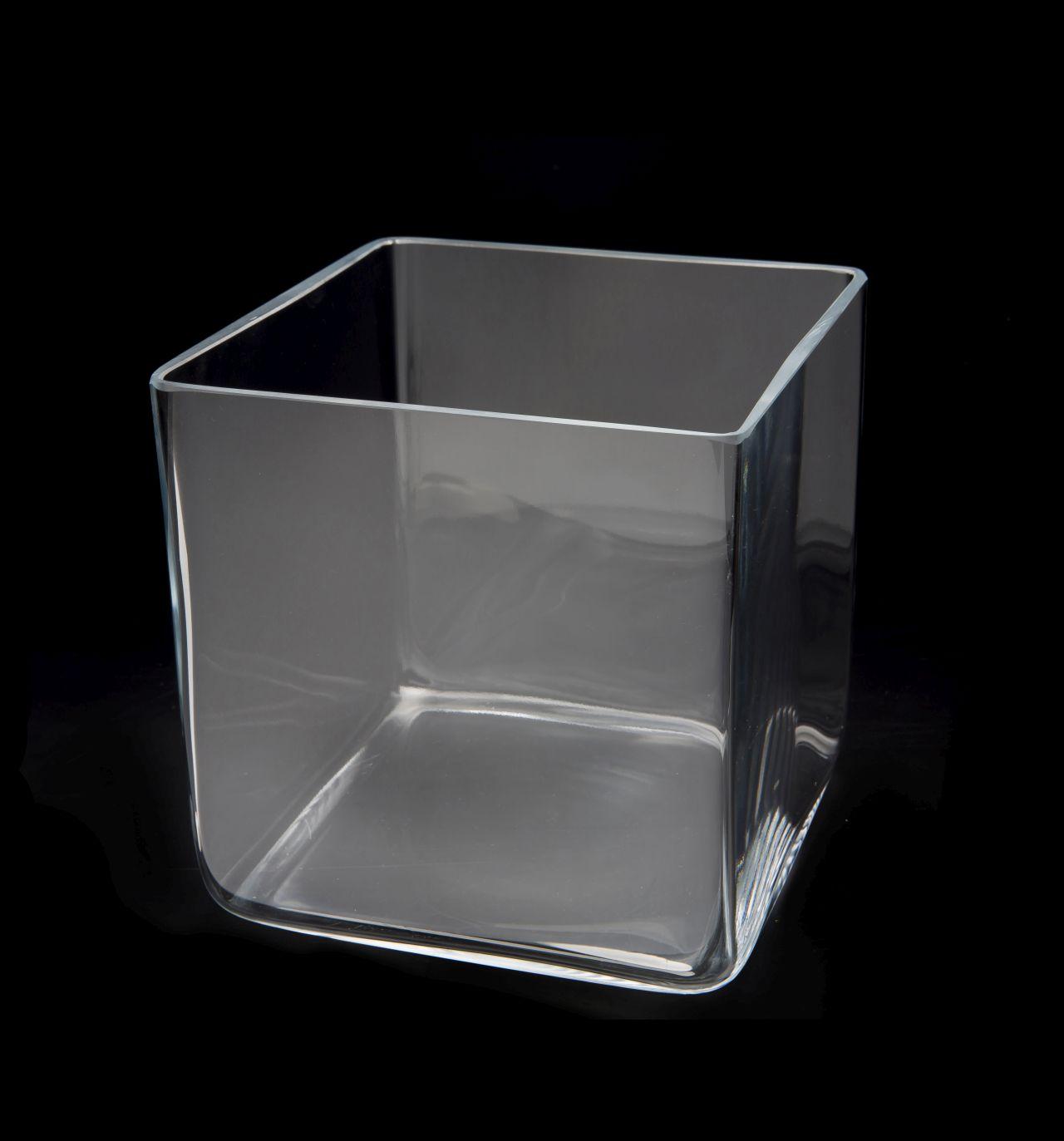 AQUAEL AquaDecoris Cube 20 x 20 x 20 cm 7L nano-aquarium pour crevettes, Betta et petits poissons