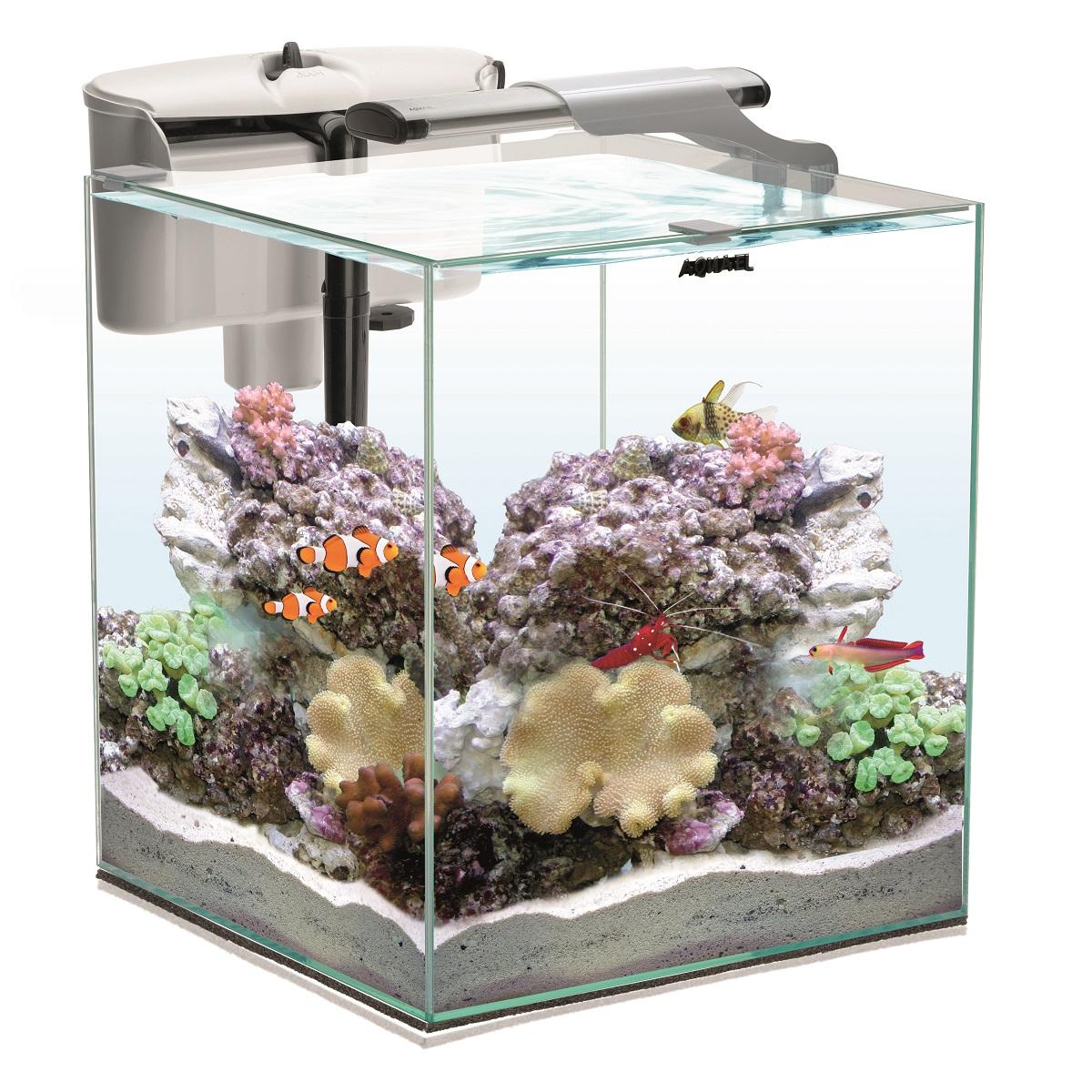 AQUAEL Nano Reef Duo 49L aquarium 35 x 35 x 40 cm équipé pour l\'eau de mer avec éclairage LEDs 10W et filtration