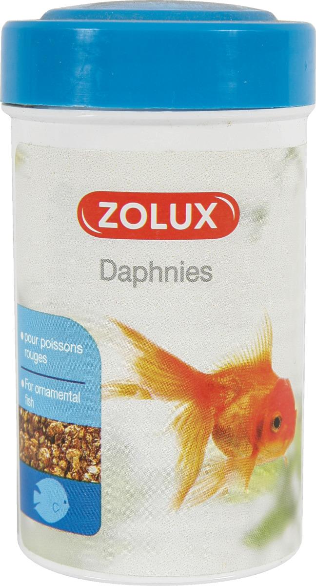 ZOLUX Daphnies 100 ml nourriture 100% Daphnia pour tous poissons d\'eau douce douce