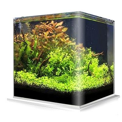 Cuve nue AMTRA NanoTank 60 L dimensions 38 x 38 x 43 cm en verre 5 mm