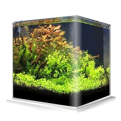 Cuve nue AMTRA NanoTank 30 L dimensions 30 x 30 x 35 cm en verre 5 mm