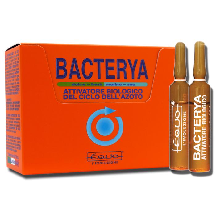 EQUO Bacterya 12 Ampoules accélère le cycle de l\'azote en aquarium d\'eau douce et d\'eau de mer