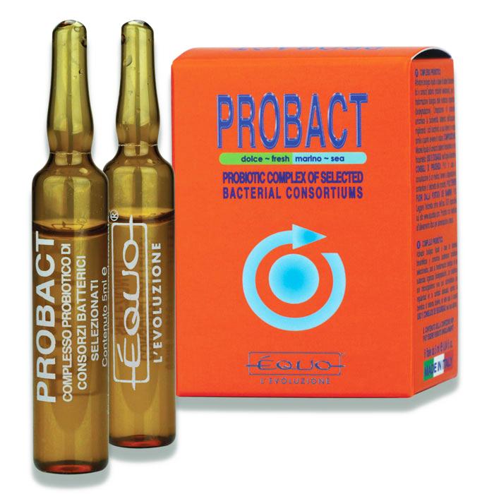 EQUO Probact 6 Ampoules bactéries probiotiques purificatrices pour aquarium d\'eau douce et eau de mer