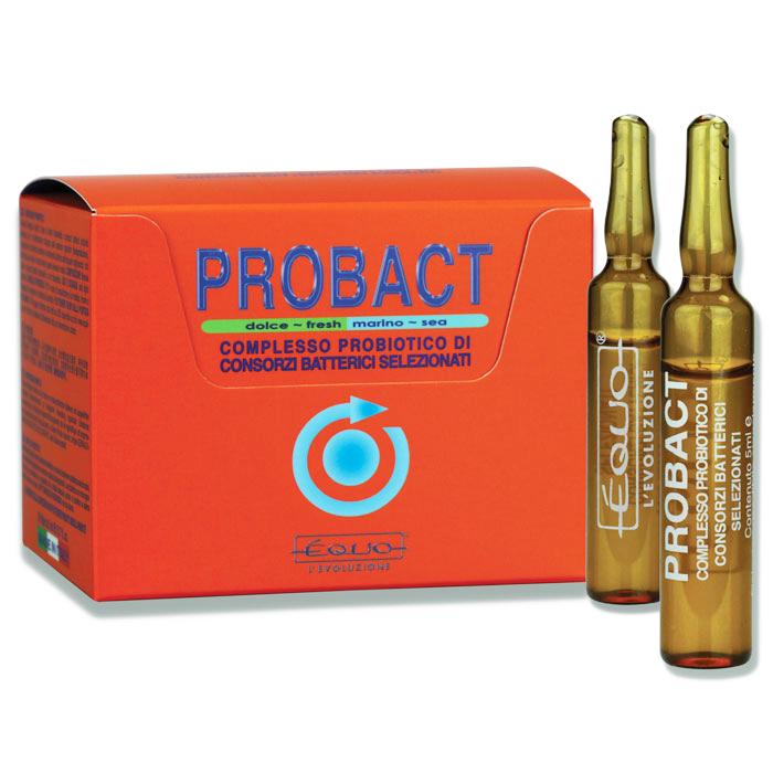 EQUO Probact 24 Ampoules bactéries probiotiques purificatrices pour aquarium d\'eau douce et eau de mer