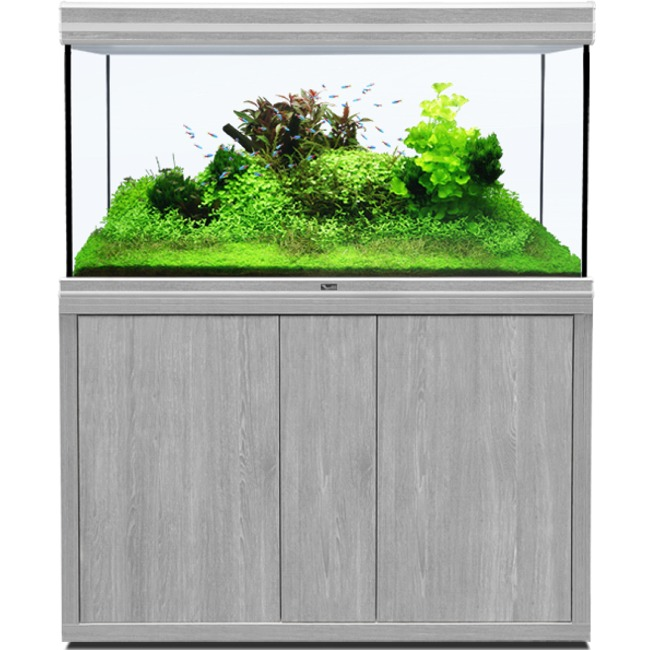 AQUATLANTIS Fusion LED 2.0 120 x 60 x 75 cm aspect Frêne Gris aquarium 540 L avec meuble