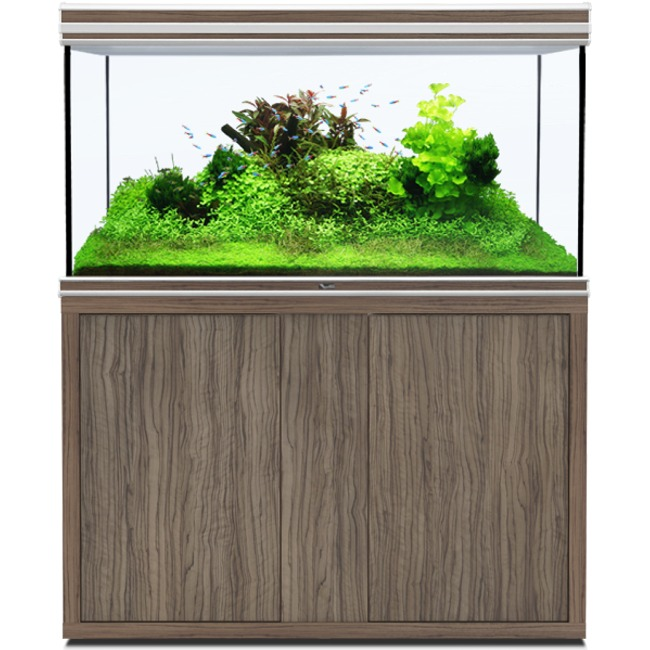 AQUATLANTIS Fusion LED 2.0 120 x 60 x 75 cm Satin Olive aquarium 540 L avec meuble
