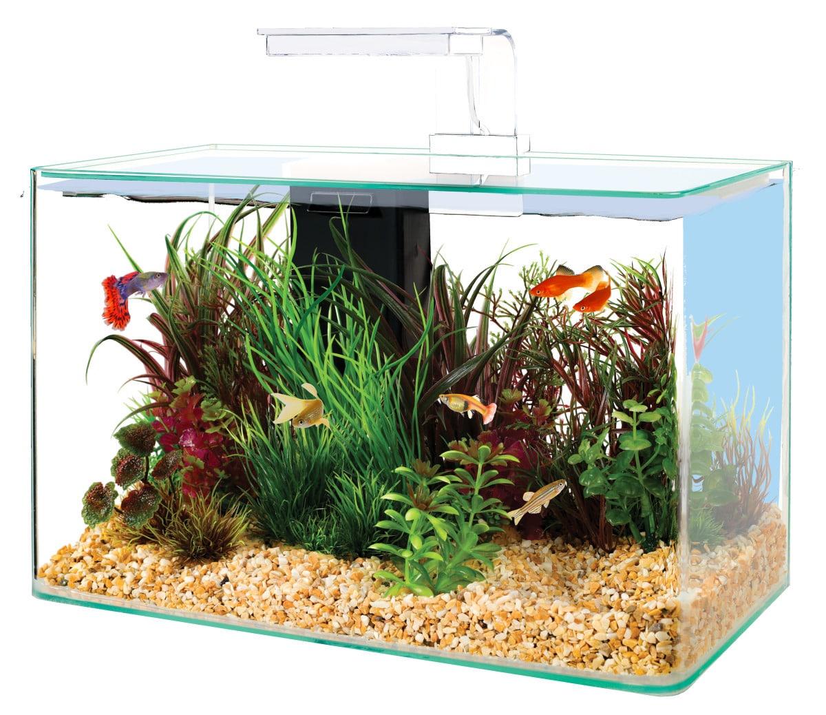 ZOLUX Aqua Clear 40 Blanc aquarium 17 L avec éclairage LEDs et filtre interne