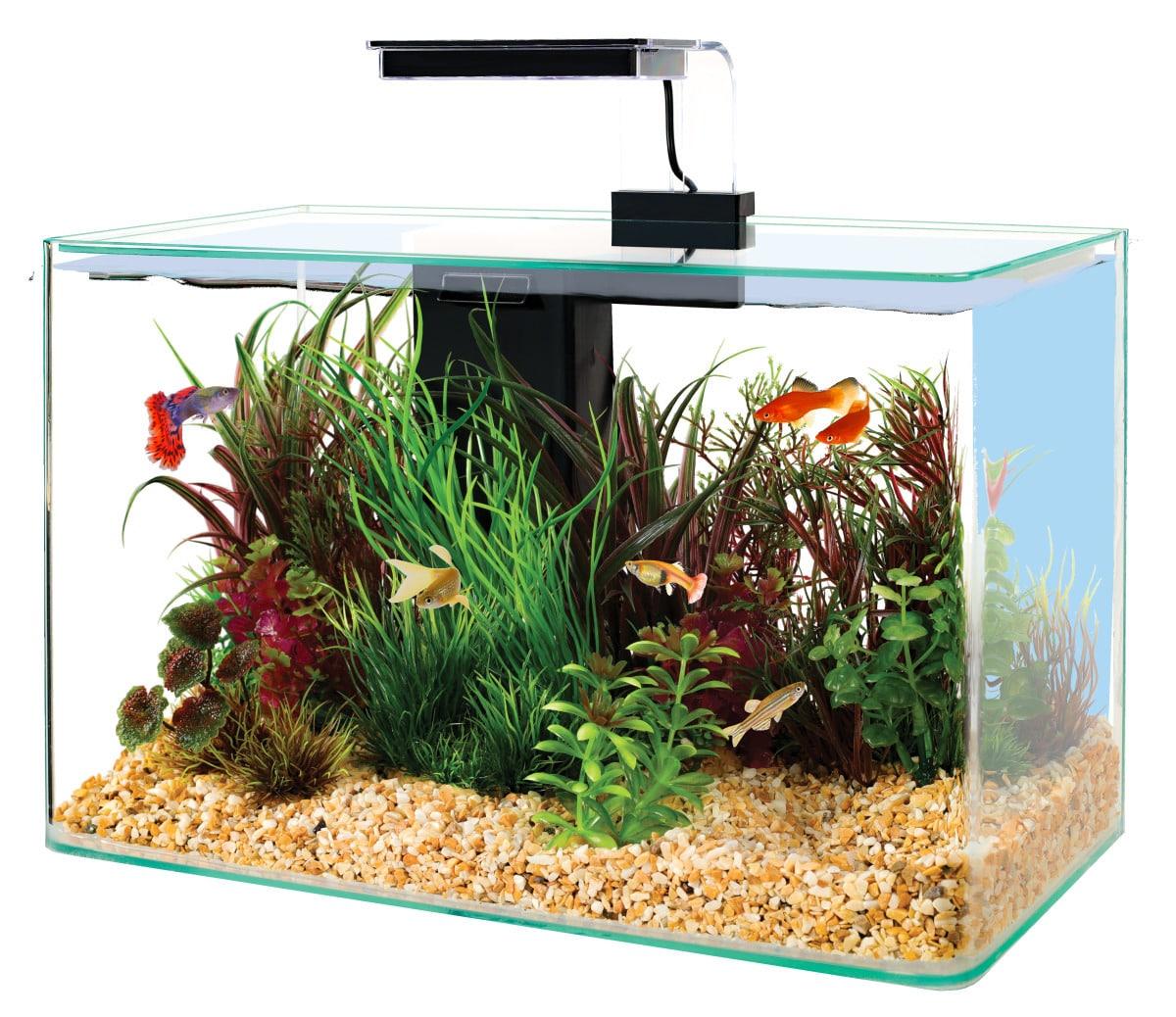 ZOLUX Aqua Clear 40 Noir aquarium 17 L avec éclairage LEDs et filtre interne
