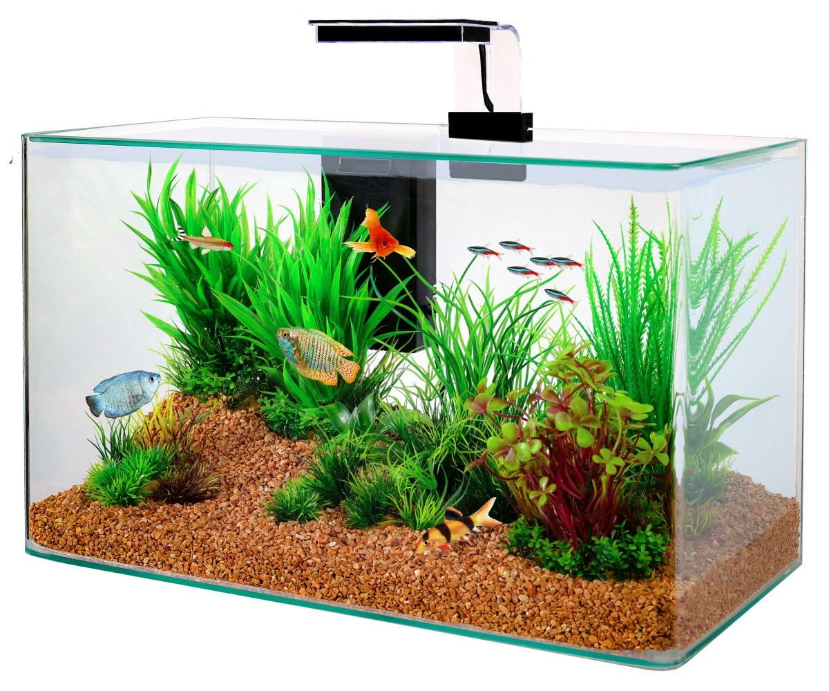 ZOLUX Aqua Clear 50 Noir aquarium 32 L avec éclairage LEDs et filtre interne