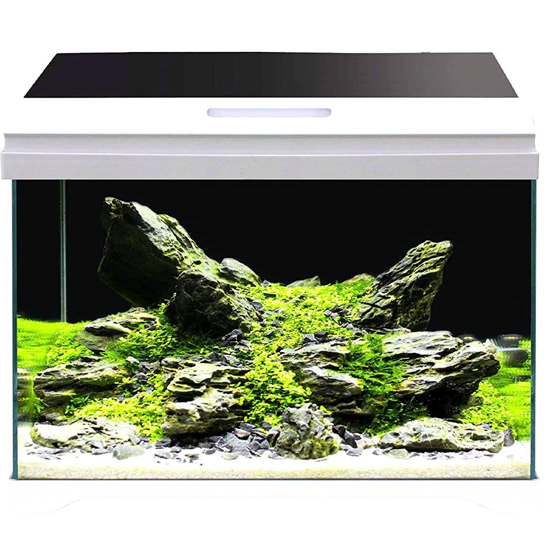 AMTRA Modern Tank 50 LED aquarium équipé 40L dimensions 50,5 x 25,5 x 40 cm de haut