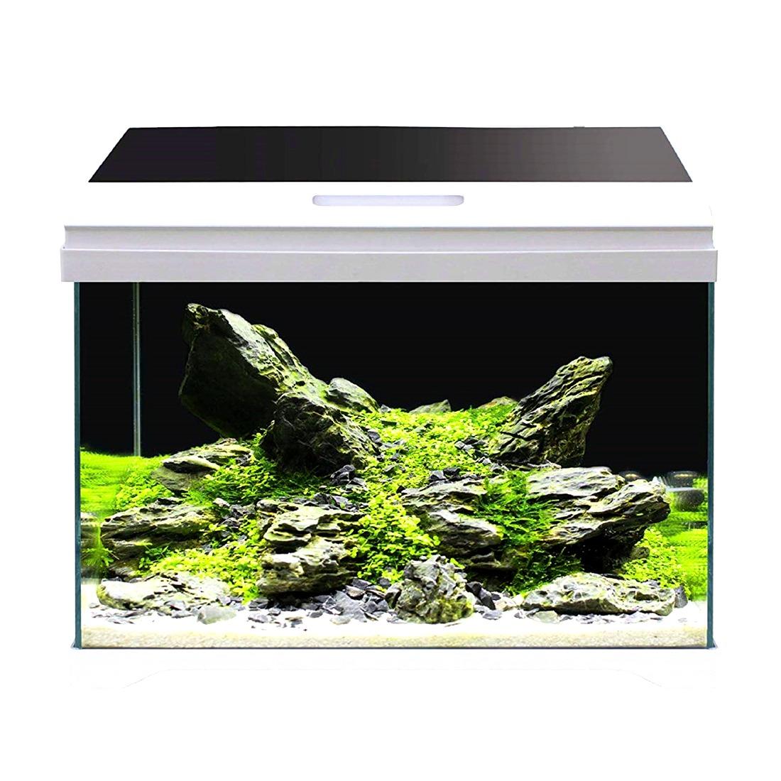 AMTRA Modern Tank 40 LED aquarium équipé 28L dimensions 42,5 x 23,5 x 36,5 cm de haut
