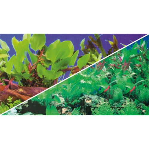 Poster d\'aquarium à la coupe Aquarium Planté, imprimé sur 2 faces. Hauteur 60cm