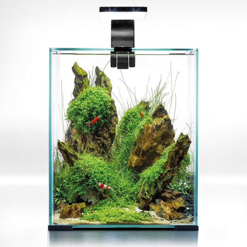 AQUAEL ShrimpSet Day & Night 20 Noir nano-aquarium 19L tout équipé 25 x 25 x 30 cm