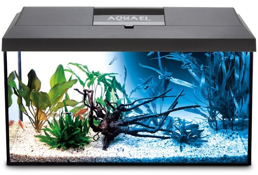 AQUAEL Leddy 75 Noir Day & Night aquarium équipé 75 x 35 x 40 cm, 105L avec éclairage LEDs 14W