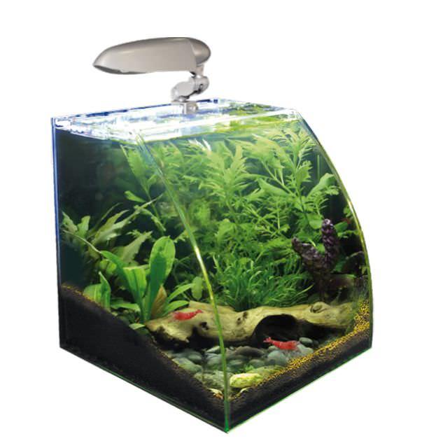Nano aquarium wave box vision 30 avec vitre avant courb for Filtre aquarium 20l