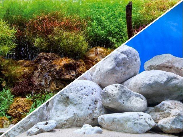 Poster d\'aquarium à la coupe pour aquarium Rivière de cailloux blanc ou Aquarium planté, imprimé sur deux faces. Hauteur 29, 45 ou 60 cm