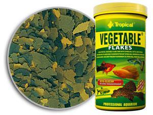 520_c08_vegetable