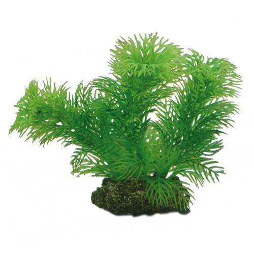 Hobby egeria 13cm plante artificielle pour aquarium for Plante pour aquarium